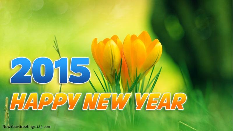 happy-new-year-2015-16
