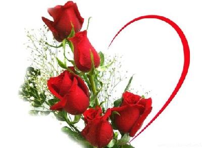 Ảnh nền động hoa hồng cho ngày lễ tình nhân